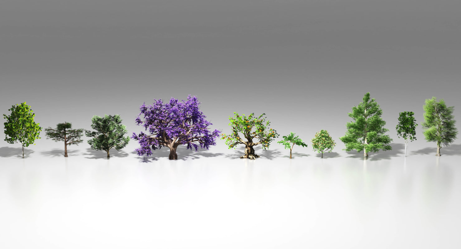 10 trees maple pine 3d max