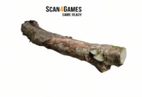 Snag wood 3 Scan HD +LODs