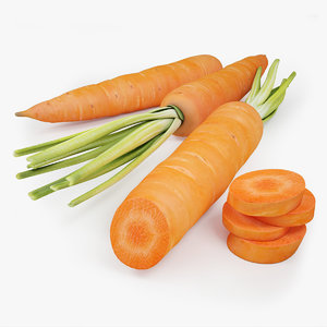 3d model of carrot modeled