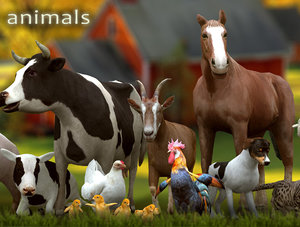 12 domestic animals horse 3ds