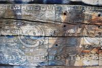 Wood_Texture_0058
