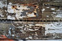 Wood_Texture_0060