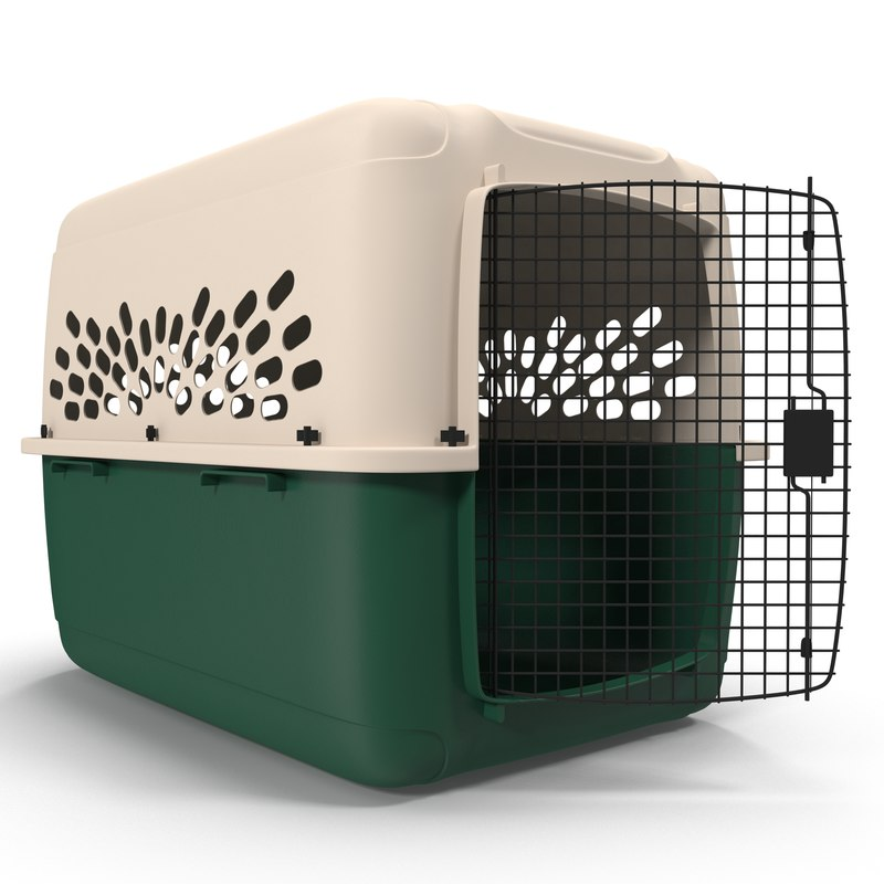 large pet carrier modeled 3d model