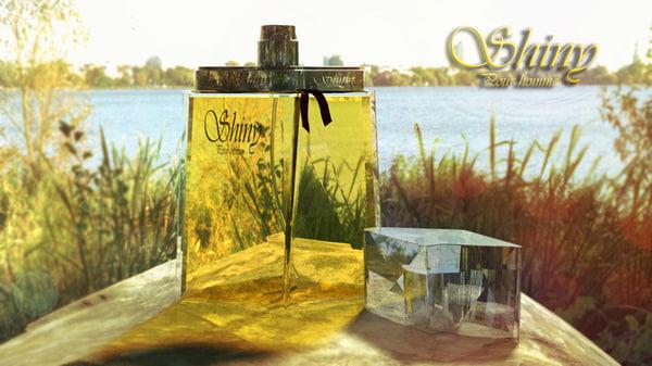 perfume 3d max
