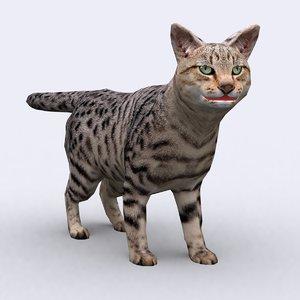 3ds - cat
