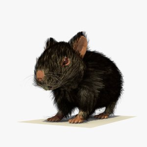 3ds max black hamster fur