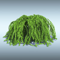 3d model of tree bush