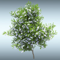 tree leaves 3d max