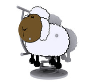 3d model of sheep spring