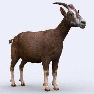 3ds max - goat