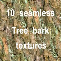 Tree Bark Collection 9