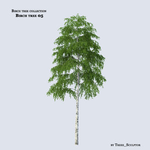 3ds max birch tree