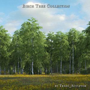 hi-poly birches tree 3d max