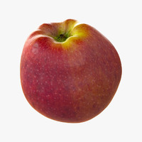 Apple Realistic Red Common