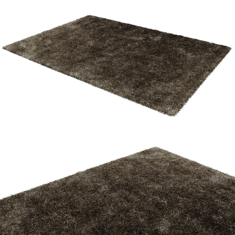 max spider rug modeled