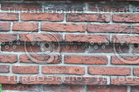 Wall_Texture_0066