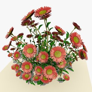 3d pink daisy flowers