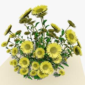 yellow daisy flowers 3d model