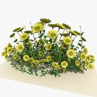 3dsmax white daisy flowers