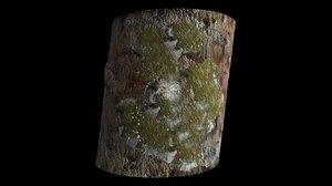 lichens fungus 3d obj