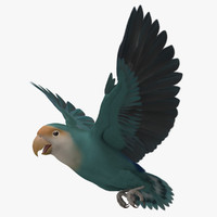 agapornis roseicollis peach faced 3d model