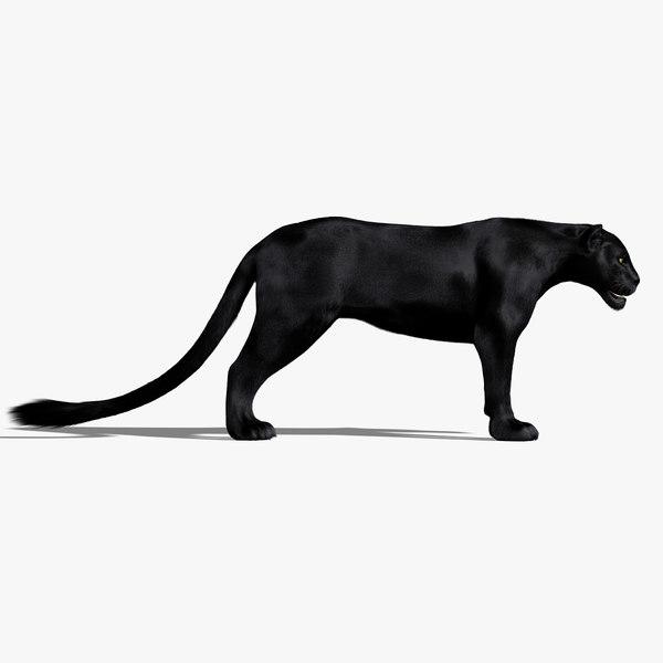 3d black panther fur animation