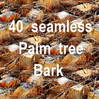 Palm Tree Bark Mega Collection 1