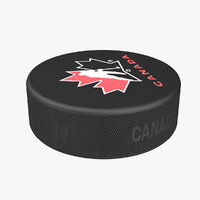 Hockey Puck 3