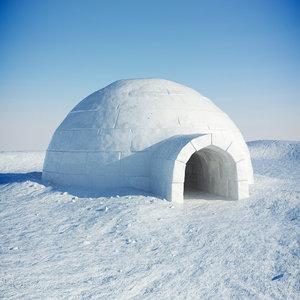 igloo snow 3d model