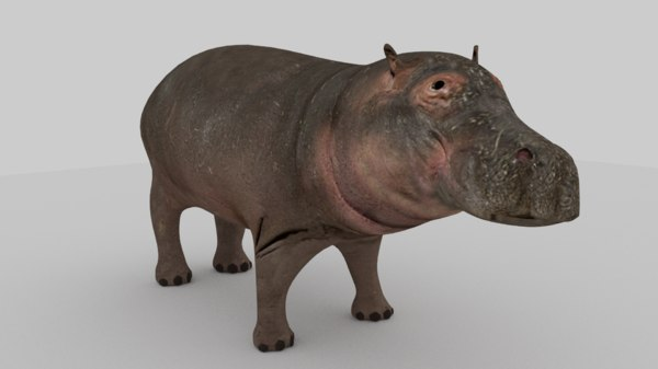 hippo 3d 3ds