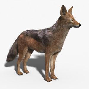 jackal fur 3d max