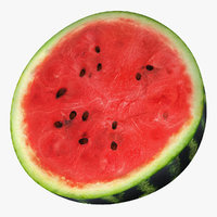 3dsmax watermelon cross section 2