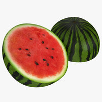 3d watermelon cross section 3
