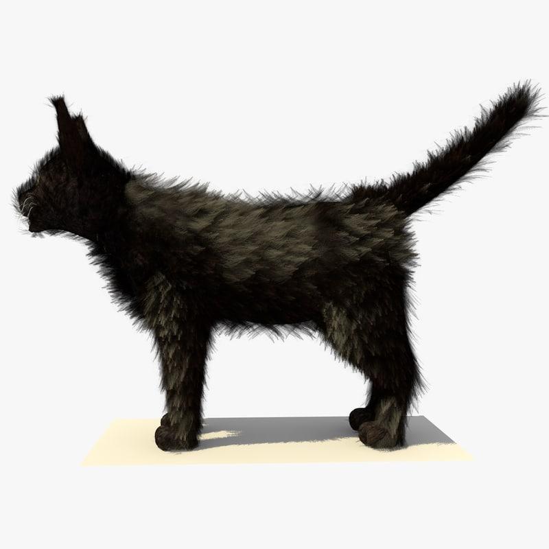 3d model black cat fur
