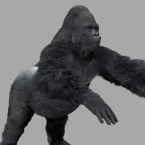 3d gorilla rigging shave