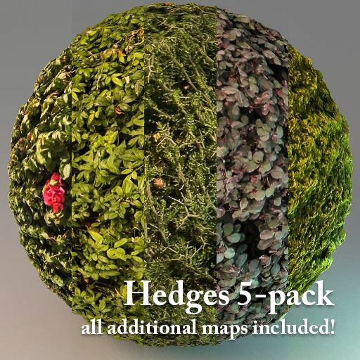 Hedges - 5 Hi-Res Textures