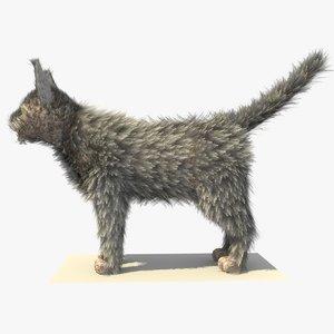 grey cat fur 3d model