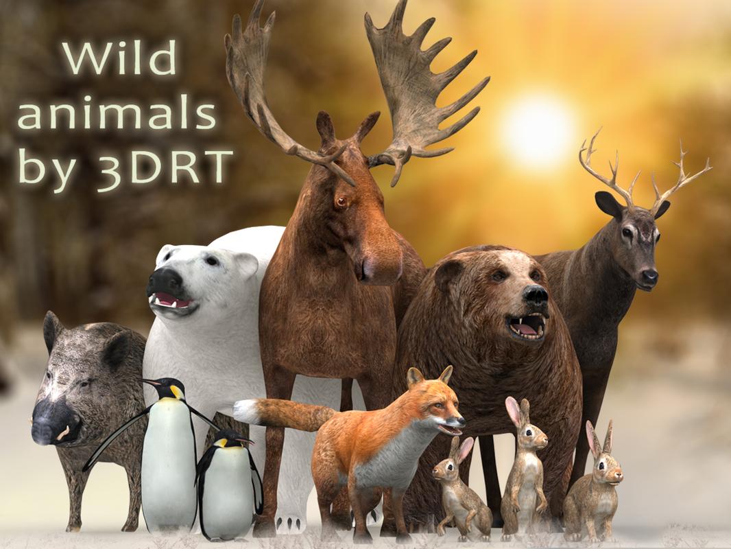 3d 3ds wild animals - bear