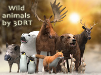 3d 3ds wild animals - bear