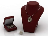 jewelery display set max