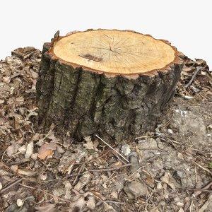3d tree stump 12