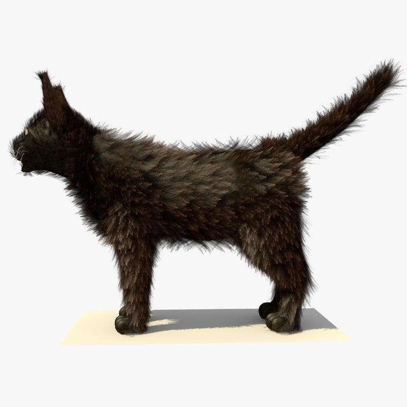 brown havana cat fur 3d model