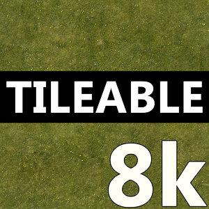 8K Grass Texture