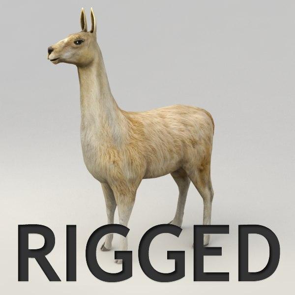 rigged llama 3ds