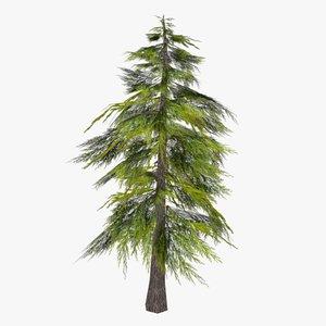 pine tree obj