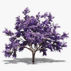 flowerg jacaranda tree 3d max