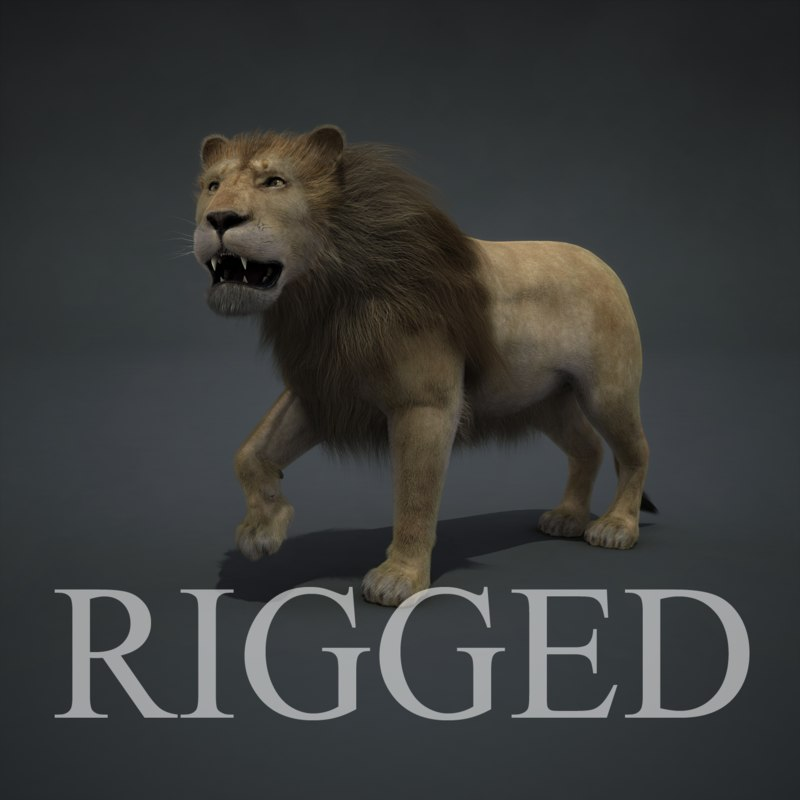 3d model realistic lion rigged