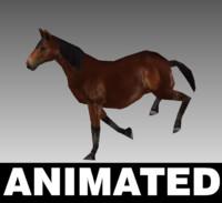 horse unity 3d model