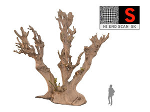 3ds max scanned