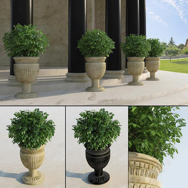 3d traditional entrance plant